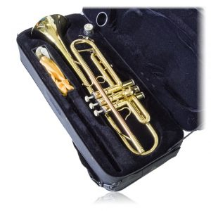 instrument case will help with Packing musical instruments